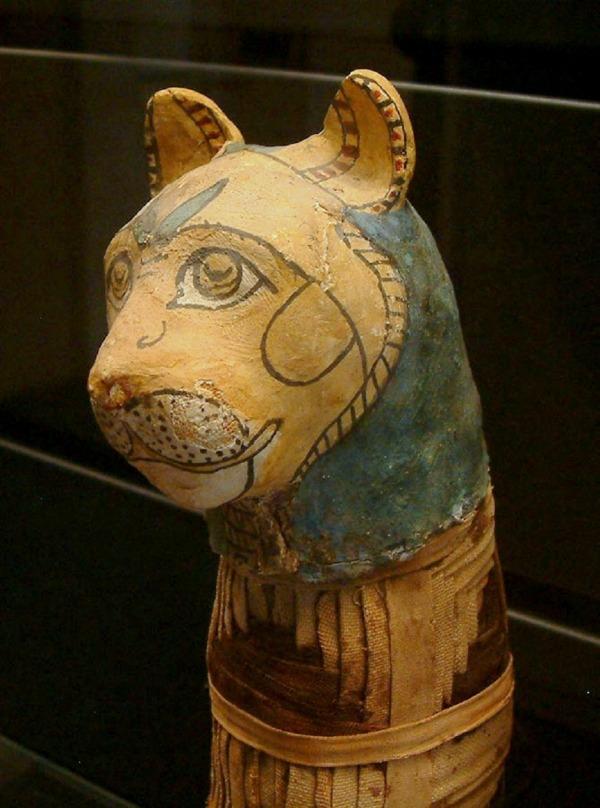 6. Chat momifié musée du Louvre.