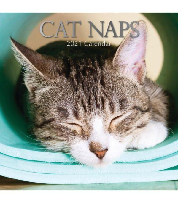 calendrier siestes de chats 2021
