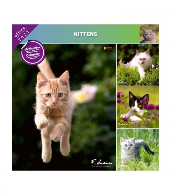 chatons 2021 calendrier affixe 3