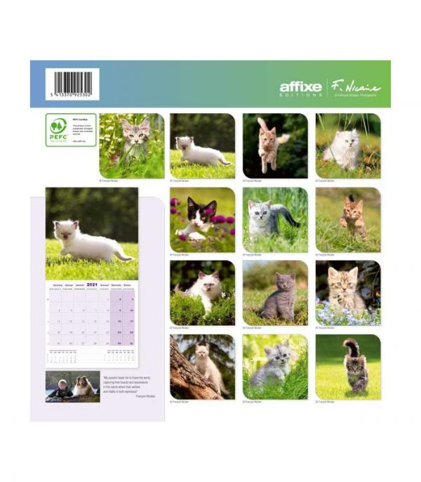 chatons 2021 calendrier affixe 4