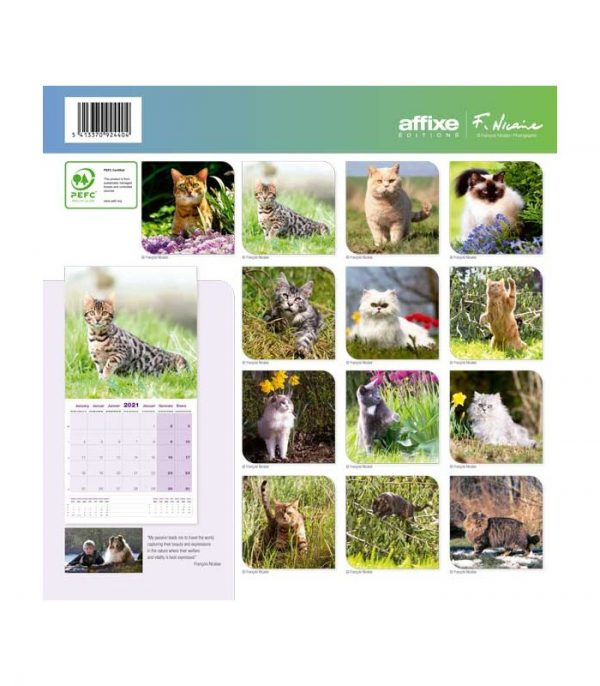 chats 2021 calendrier affixe 2