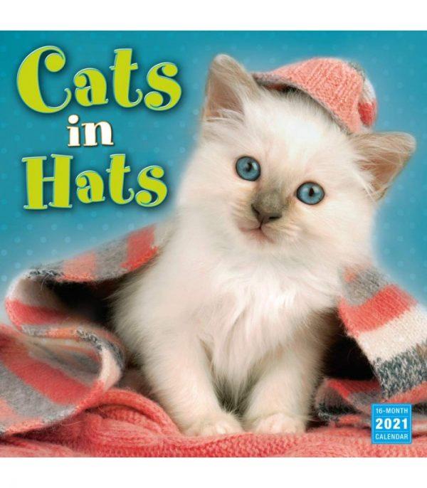 chats en chapeaux 2021 1 1