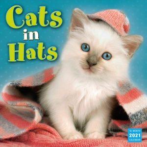 Calendrier chats en chapeaux 2021 1
