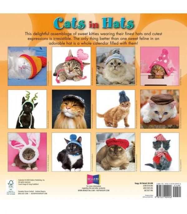 chats en chapeaux 2021 2