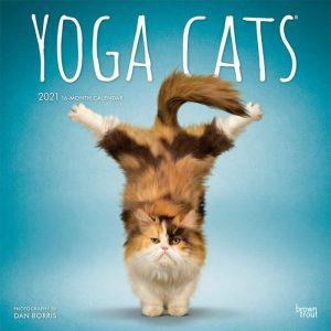 Calendrier yoga des chats 2021