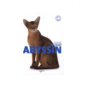 l abyssin collection chat de race