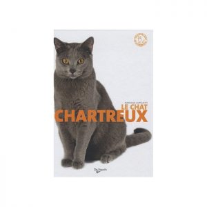 le chartreux collection chat de race
