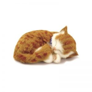 peluche perfect petzzzz chat blanc et roux