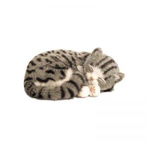 peluche perfect petzzzz chat europeen tigre